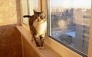 Варианты отделки балкона, какой выбрать для себя